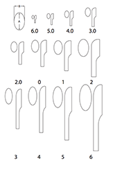 TamañosjuntoconTabla-1 (1)